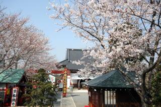 水子、各種供養 | 平野山高蔵寺